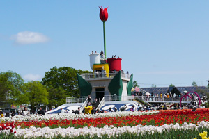 Toyama_tulipfair02